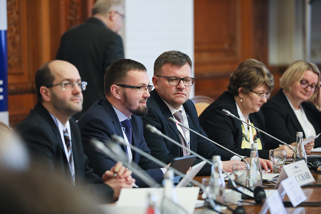 Informal Meeting of the Social Protection Committee, at the Palace of the Parliament